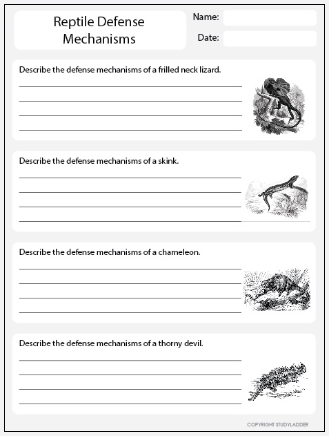 reptile defense mechanisms worksheet 1 science skills online interactive activity lessons. Black Bedroom Furniture Sets. Home Design Ideas