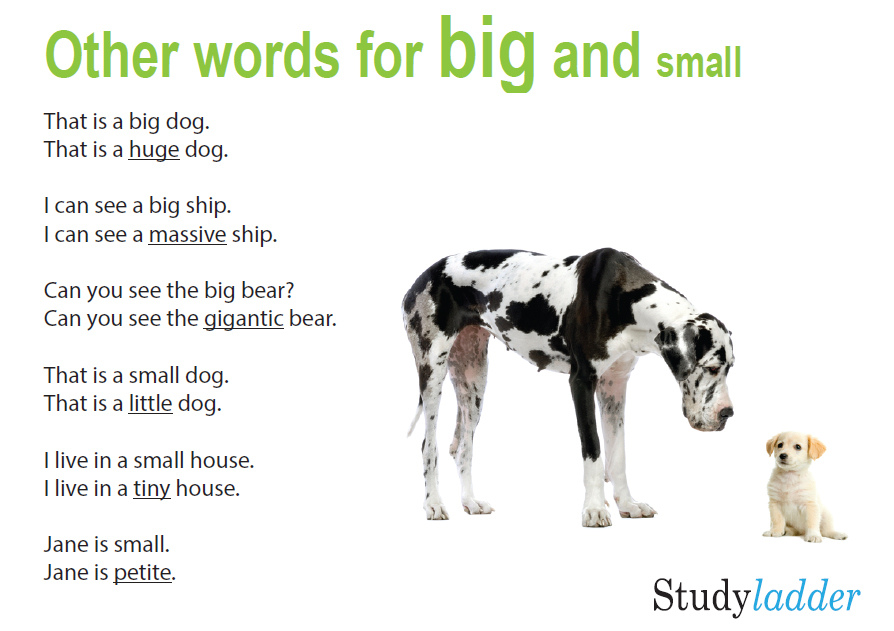 Other Words For Big And Small, English Skills Online