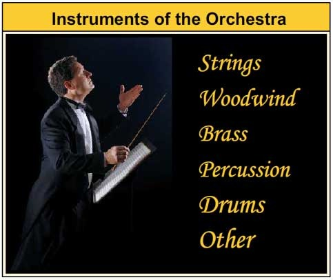 Instruments Of The Orchestra